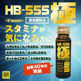 力がみなぎるHB-555 極